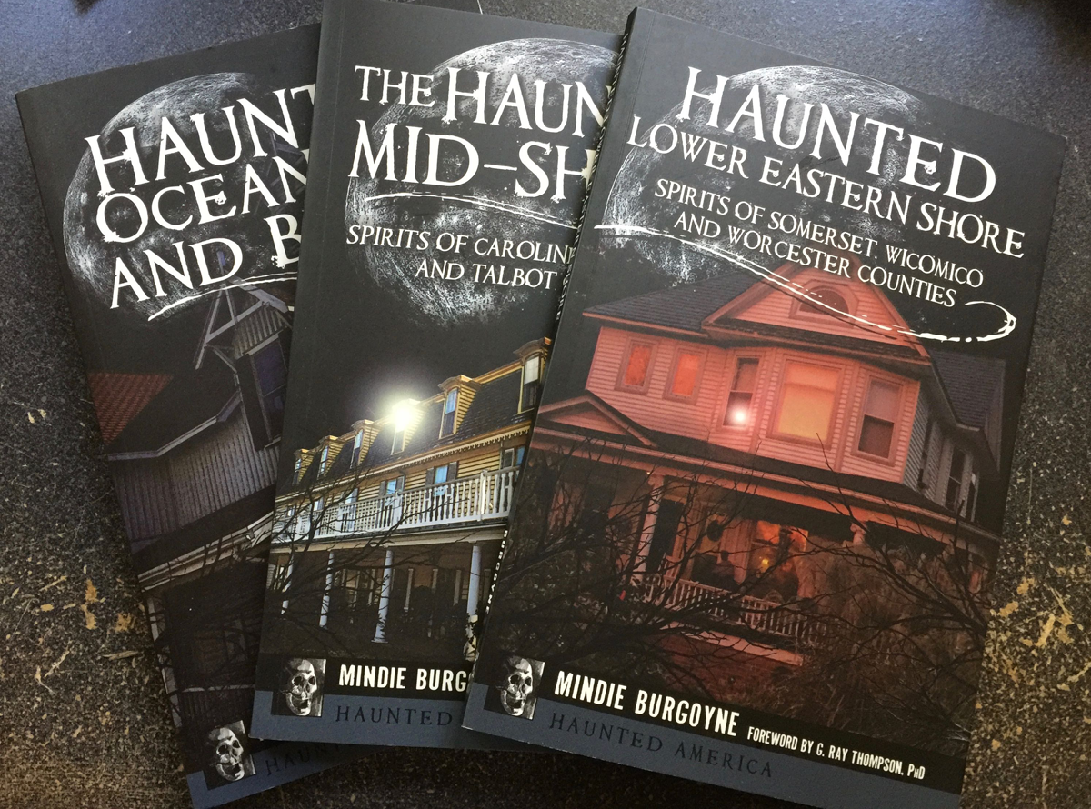 Eastern Shore Series - 3 books by Mindie Burgoyne